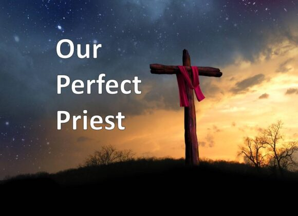 Our Perfect Priest
