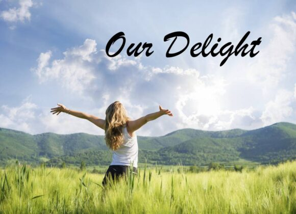 Our Delight