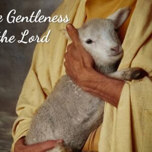 Gentleness of the Lord